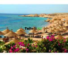 Egypt Caire Sharm El Sheikh