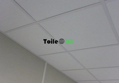 Construction Travaux Faux Plafond Demontable PVC