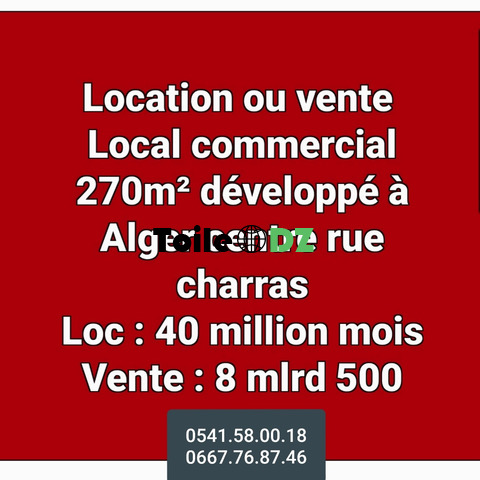 Location ou vente local commercial à alger centre