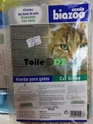 Herbe digestif pour chat